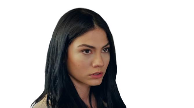 Demet Ozdemir Pretty Turkish actress