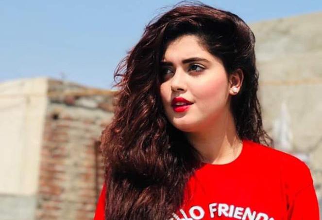 Top 10 Famous Pakistani TikTokers List 2020 / Most Followed Pakistani TikTok Stars
