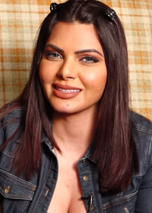 Sherlyn Chopra Age, Biography, Wiki, Family Info, Education, Career, Movies, Television, Height & Net Worth