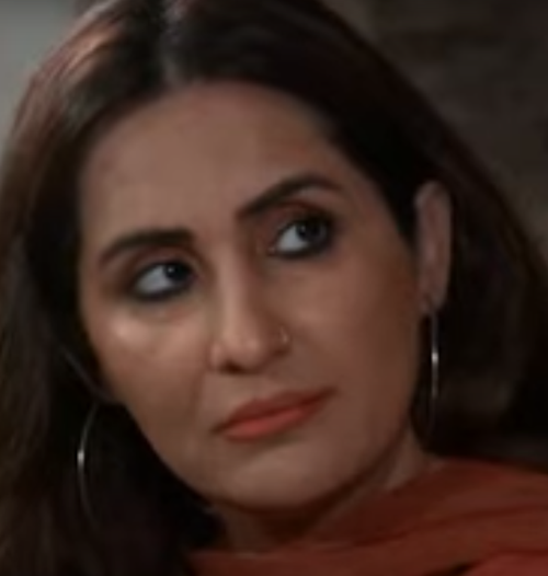 Sabreen Hisbani Age, Biography, Wiki, Family, Education, Career Debut, Movies, Television, Awards & Net Worth